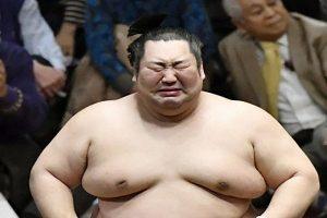 相撲に賭けるときのオッズを知る方法